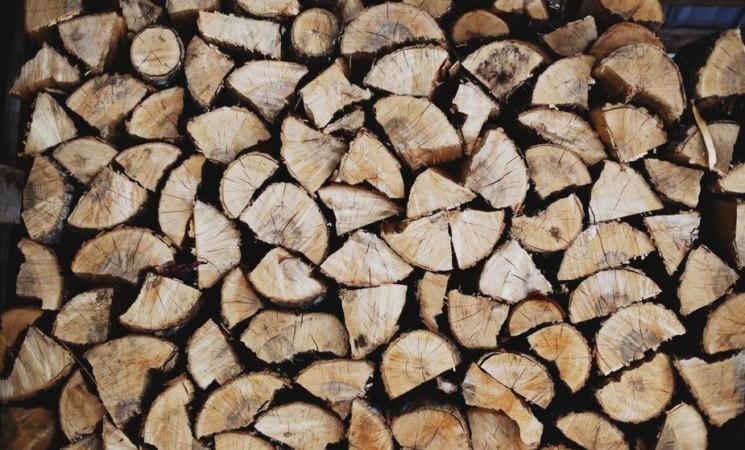 Bois et matériaux biosourcés : Nouvelles fonctionnalités, traitement et cycle de vie des matériaux