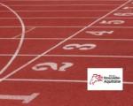 Appel à projets Matériaux pour le sport et loisirs